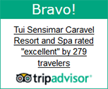 trip advisor badge 2